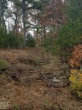 自然路径石头 库存图片