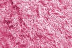 自然软的浪漫粉红彩笔动物蓬松毛皮羊毛纹理特写镜头豪华家具材料或背景文本的 库存照片