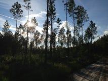 自然远足 图库摄影