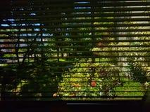 自然通过窗口 库存照片