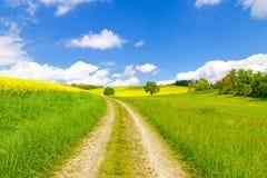 自然道路在春天 免版税库存图片