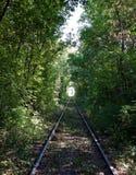 自然隧道 免版税库存图片