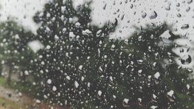 自然雨水下落 免版税图库摄影