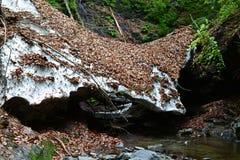 自然雪桥梁 库存图片