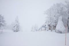 自然雪的山 免版税图库摄影