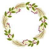 自然霍莉,常春藤,在白色背景的槲寄生圣诞节装饰花圈  库存图片