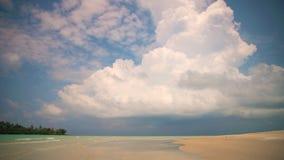 自然风景、惊人的看法含沙热带海滩与棕榈树在晴天在背景天蓝色的海水和蓝天 股票视频