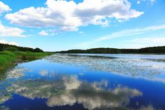 自然风景出色的意见在一个夏日 聚合在天际的湖和蓝天 反射水表面上的天空 免版税库存图片