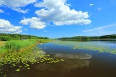 自然风景出色的意见在一个夏日 聚合在天际的湖和蓝天 免版税库存图片