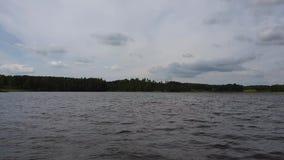自然风景出色的意见  在湖海岸的高树在天空蔚蓝有灰色云彩背景 在自然的多云夏日 股票视频