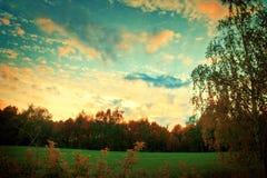 自然风景在夏天 库存照片