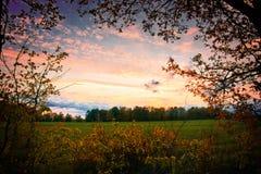 自然风景在夏天 免版税库存图片