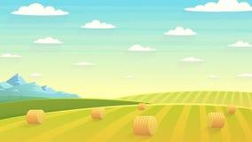 自然风景干草领域 图库摄影