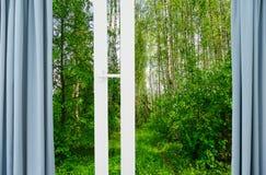 自然风景有看法通过窗口 免版税库存图片