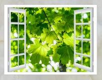 自然风景有看法通过窗口 免版税图库摄影