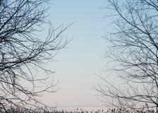 自然风景背景 库存图片
