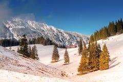 自然风景,多雪的Piatra Craiului山喀尔巴汗在冬天,在罗马尼亚 免版税库存照片