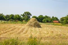 自然风景-在领域的干草 库存图片