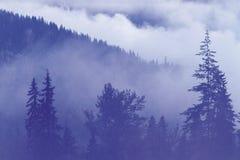 自然风景 库存图片