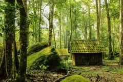 自然,旅行在泰国 免版税库存图片