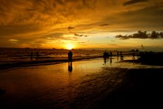 自然,日落 免版税图库摄影