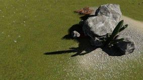 自然 冰砾和石头Kopozicija  向量例证