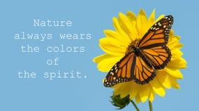 自然总是佩带精神的颜色-引述与一只女君主蝴蝶 库存照片
