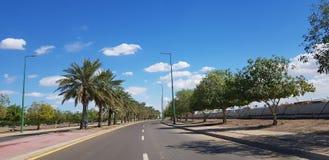 自然 树 街道 天空 免版税库存图片