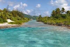 自然水池在Borabora 库存图片