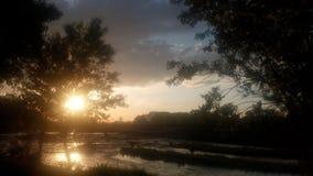 自然水河日落kolubara森林海岸 库存照片