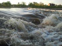 自然水河kolubara海岸 库存图片