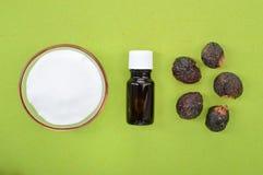 自然洗涤剂肥皂坚果和发面苏打 免版税库存照片