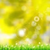 自然绿色背景。EPS 10 库存图片