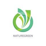 自然绿色-导航企业商标模板概念例证 抽象圈子和叶子形状创造性的标志 设计要素例证图象向量 皇族释放例证
