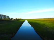 自然水草天空 免版税库存照片