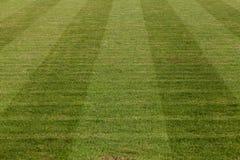 自然绿草足球场 图库摄影