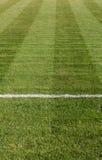 自然绿草足球场 免版税库存照片