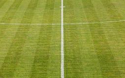 自然绿草足球场 免版税库存图片