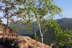 自然 西伯利亚的储备 免版税图库摄影