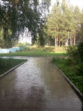 自然 雨 视图 库存图片