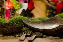 自然主题的用餐的设置 免版税库存图片