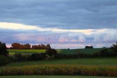 自然` s水彩在10月 免版税库存图片