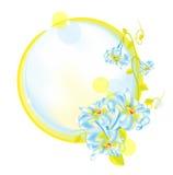 自然2朵的花 免版税库存图片