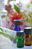 自然aromatherapy用草本 图库摄影