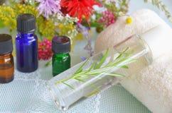 自然aromatherapy用草本 库存图片