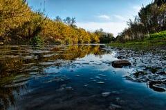 自然Eco 免版税图库摄影
