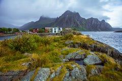 自然Lofoten在北挪威 库存图片