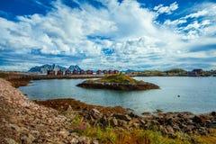 自然Lofoten在北挪威 免版税库存图片