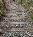 自然Staireway 免版税库存照片