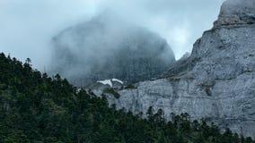 自然stupa 库存照片